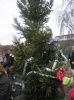 kerstboom bloemhof 006.JPG