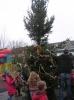 kerstboom bloemhof 008.JPG
