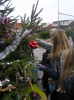 kerstboom bloemhof 017.JPG