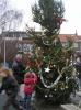 kerstboom bloemhof 027.JPG
