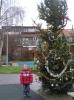 kerstboom bloemhof 026.JPG